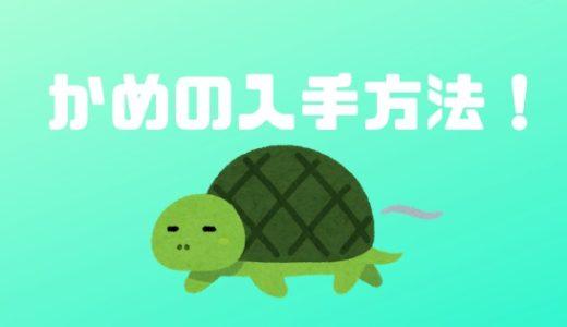 【あつ森】亀(かめ)の入手方法!生き物の方じゃ無い!?【あつまれどうぶつの森】